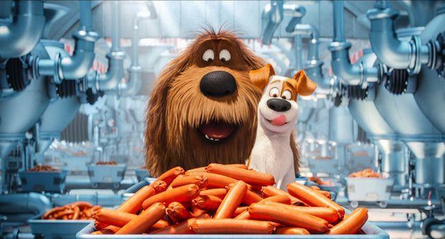 Тайная жизнь домашних животных 2: анонс