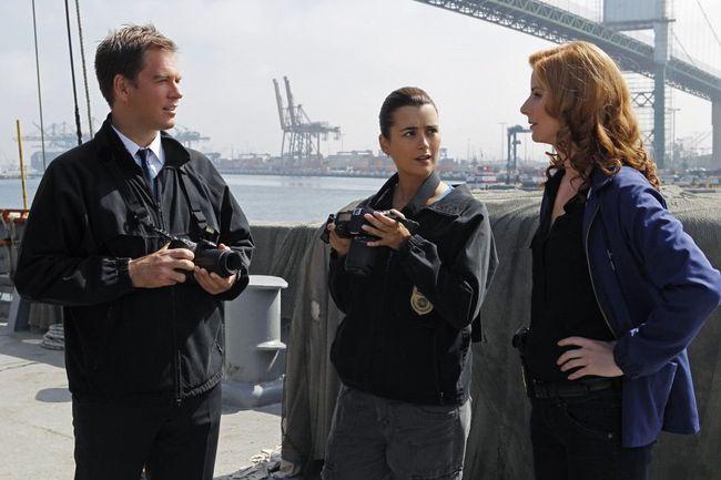 Морская полиция: Спецотдел 17 сезон — дата выхода сериала